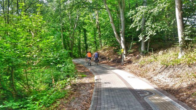 Fahrradweg durch den Stadtpark nach Danzig